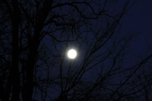 Winter Full Moon 300x200 Light Stronger than Darkness