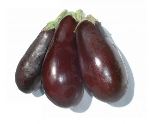 465994 eggplant1 Three Horticulture Thoughts for Thursday
