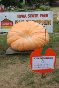 IMG 1061 200x300 Top Ten Reasons to Visit the Iowa State Fair