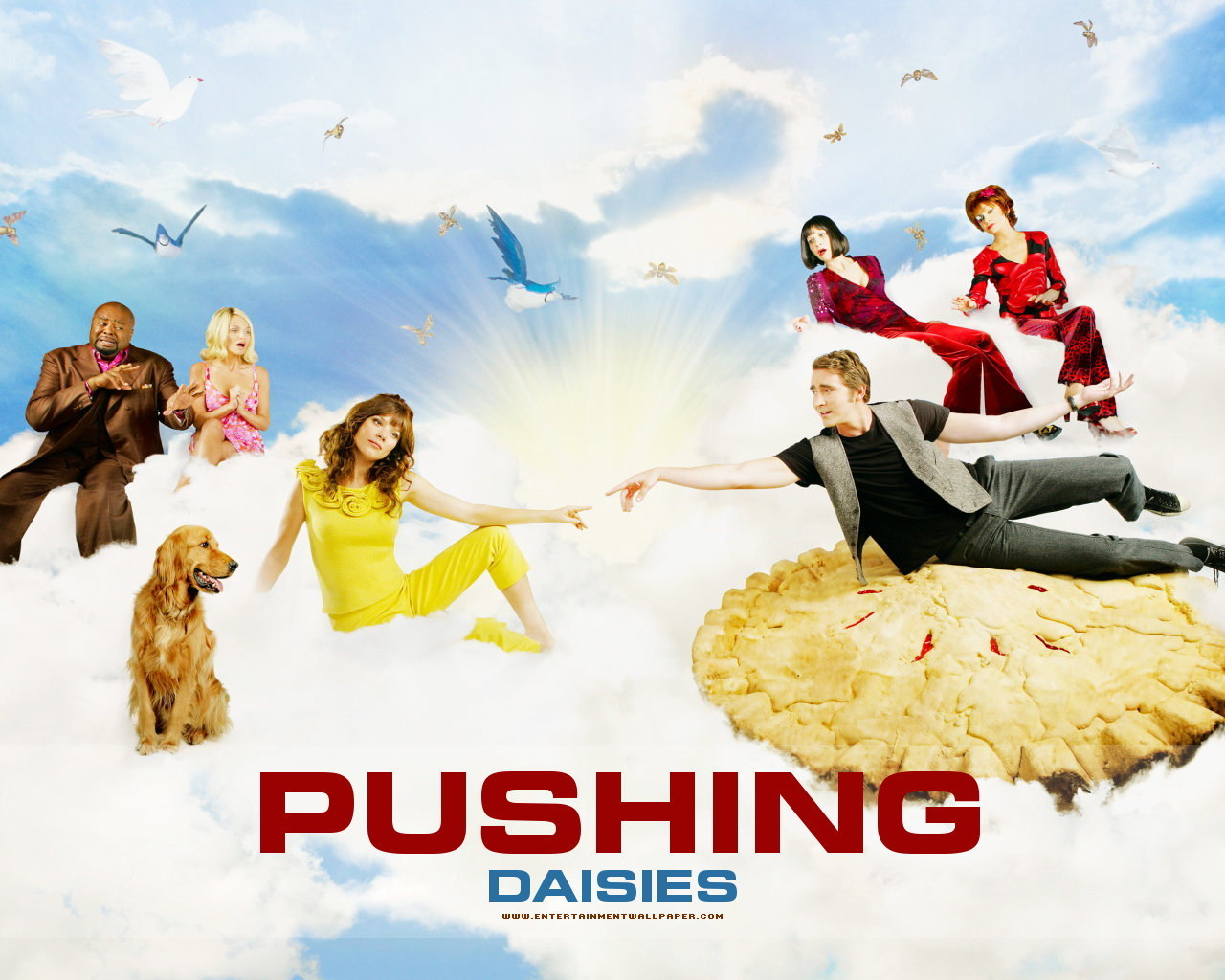 Pushing Daisies pushing daisies 2960749 1280 1024 Three Thoughts for Thursday