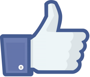 Facebook like thumb 300x256 JoLo and J Lo: Do You Like?