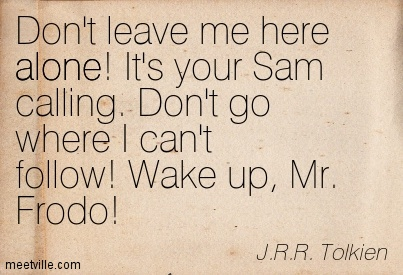 Mr. Frodo, don't leave me here alone