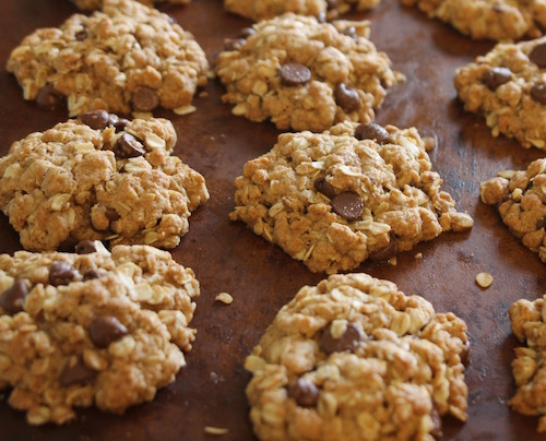 This recipe replaces butter or shortening with oil to make the most delicious chocolate chip oatmeal cookies ever.