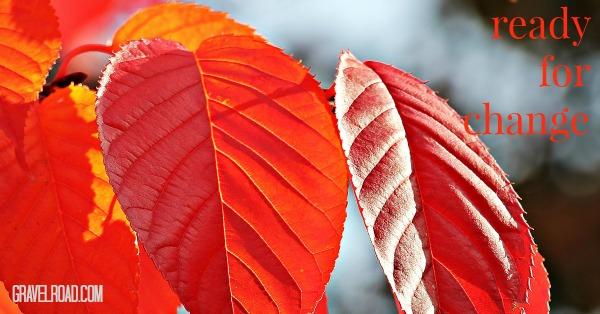 autumn GR