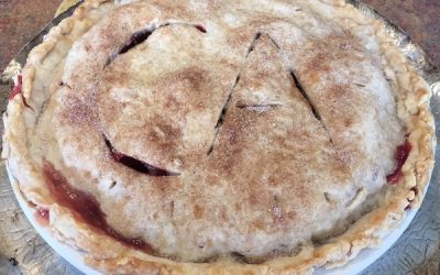 #8 Troubleshooting Pie for Thanksgiving